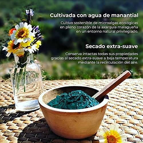 Espirulina Pura 100 Cultivada en Malaga Espana 4